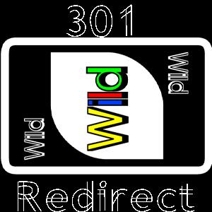 301 wildcard redirect